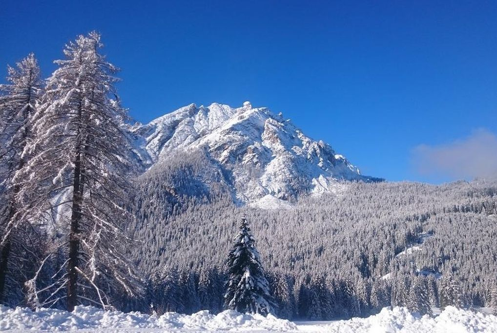 Téli feltöltődés! 5 nap/4 éjszaka 2 fő részére félpanzióval, wellness-szel Dél-Tirolban - Hotel E...