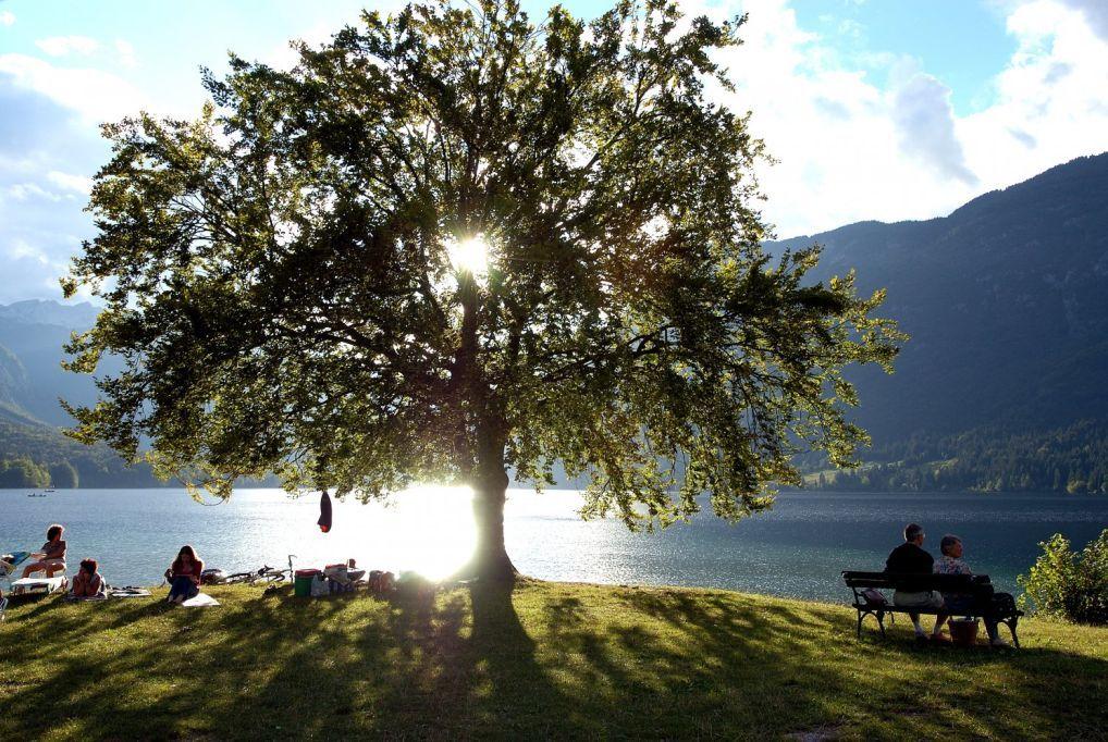 3 nap/ 2 éjszaka 2 fő részére reggelivel, wellness-szel a Bohinji-tó közelében - Bohinj Eco Hotel