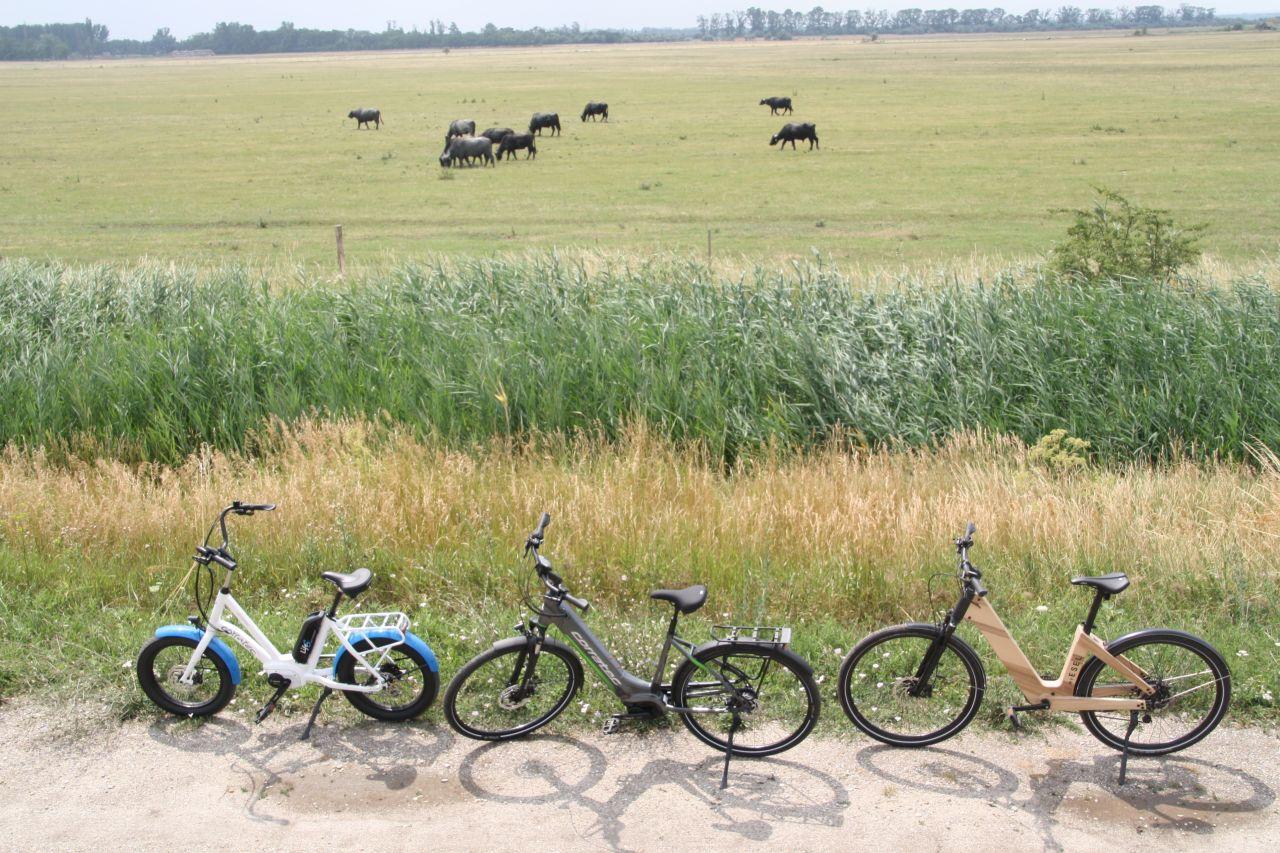 Ízek, imák, Szerelmek 1 napos e-bike túra a Fertő-tájon